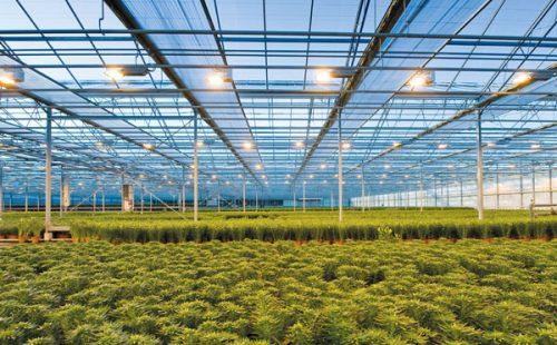 Forschung in der Agrartechnik